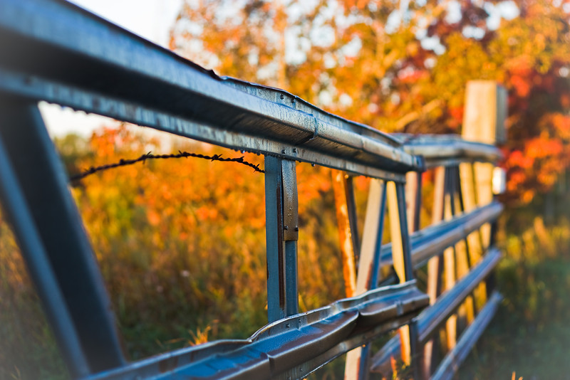 Fall Fence.JPG