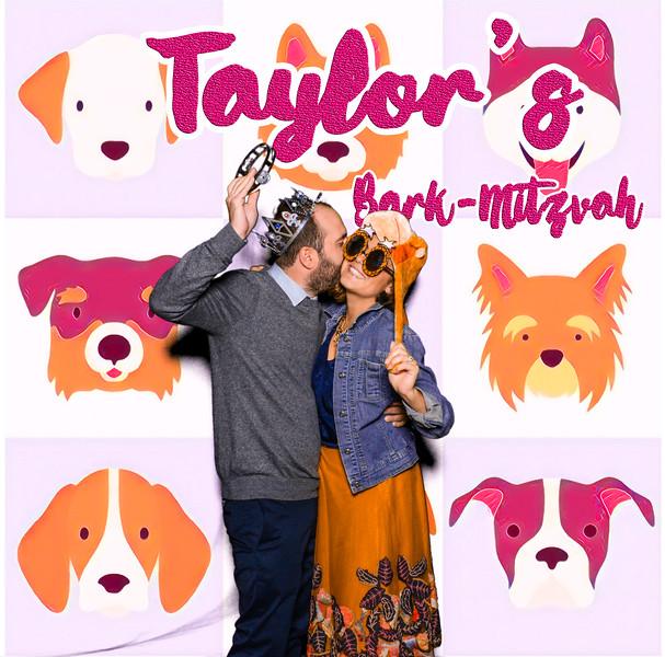 Taylors pawmitzvah-20819.jpg