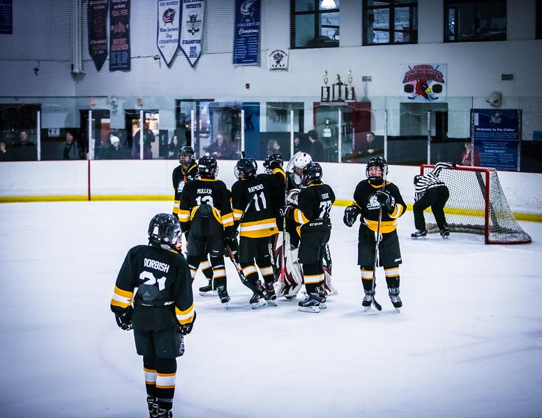 Bruins2-732.jpg
