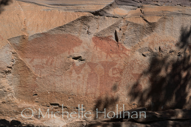 Ancient rock art in Pha Taem National Park