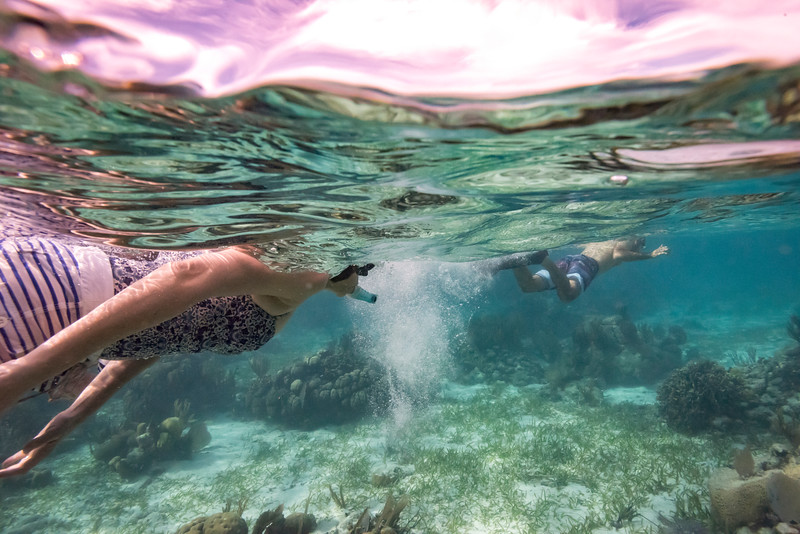 Woman snorkeling, Turneffe Atoll, Belize Barrier Reef, Belize