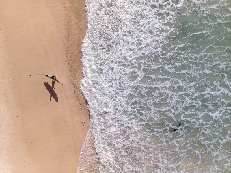 Aerial view of surfer walking along Musienberg Beach, Cape Town, South Africa