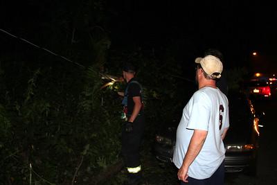 Tree Falls on Car, Hegarty Ave, Tamaqua (6-20-2012)