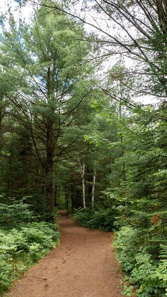 Arrowhead-Provincial-Park04.jpg