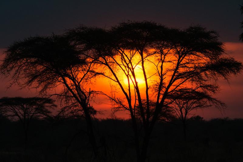 Sunset, Ruaha