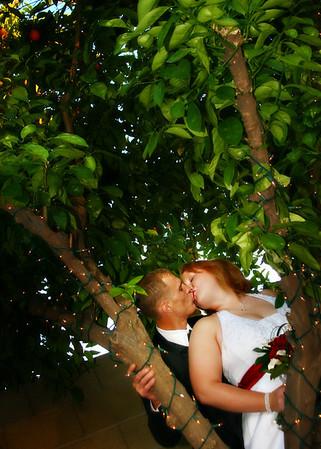 Erin and David's Wedding