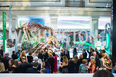 National Museum of Natural History David H. Koch Hall of Fossils - Deep Time Members Preview Gala | Alfredo Flores