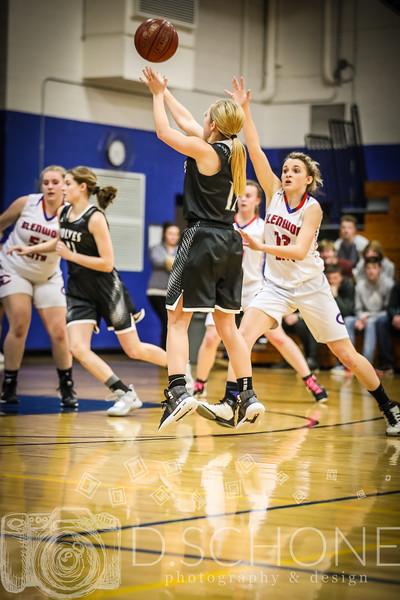 GC Girl's Basketball vs. Elmwood Plum City-110.JPG