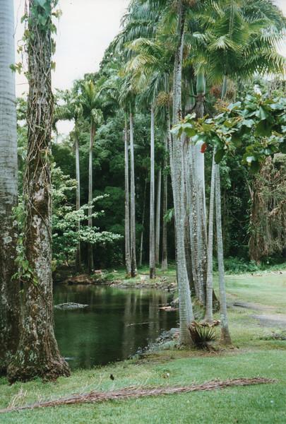199806-hawaii-10242.jpg
