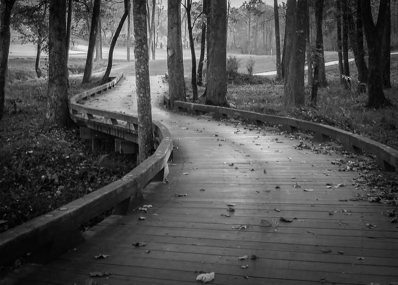 Wetland Bridge, Achasta Golf Course, Dahlonega, GA