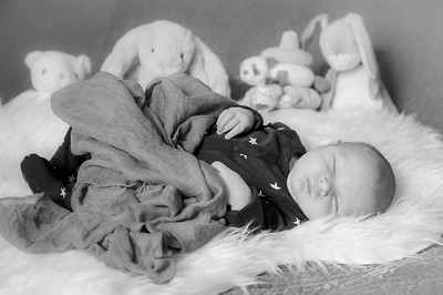 Baby Sebastian 15.03.2019