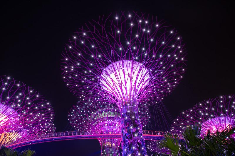 Singapore-19-200.jpg
