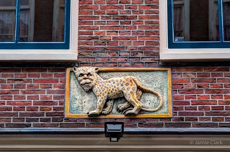 Nice Kitty. Amsterdam - July 2014
