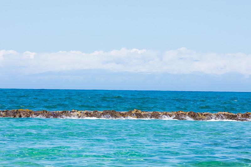 Travel_Hawaii_03062020_0359.jpg