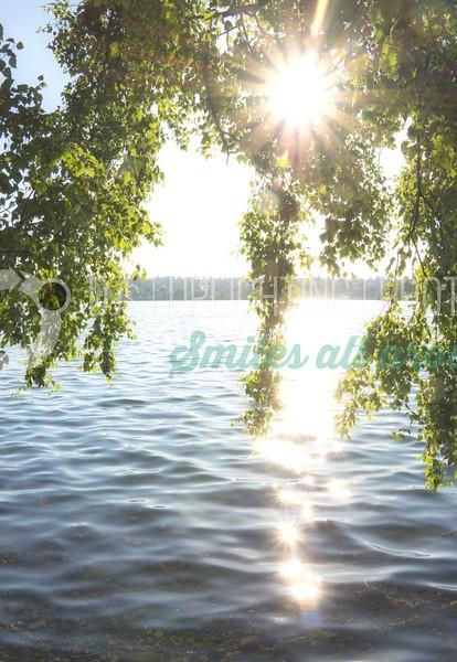 Leaves-On-Water_batch_batch.jpg