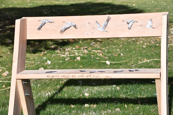 Whitfield Wildlife Benches