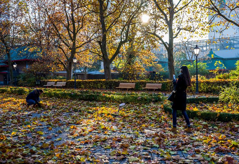 Autumn mood In Berlin Zoo