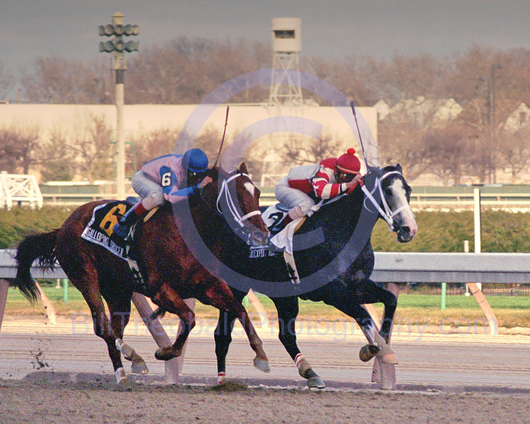Rockport Harbor and Galloping Grocer dueiling down the strech of the 2004 Remsen Stakes at Aqueduct Race Track.