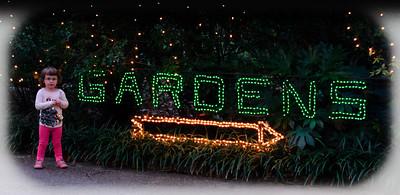 2011-12-4 Christmas
