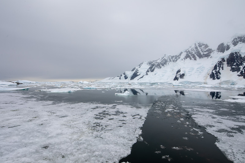 2019_01_Antarktis_04316.jpg