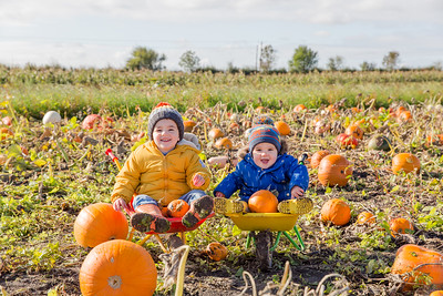 Isaac & Ewan @ The Pumpkin Patch 20