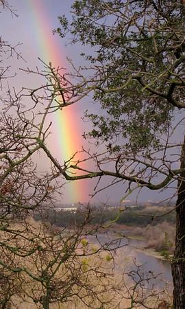 Sacramento Rainbow