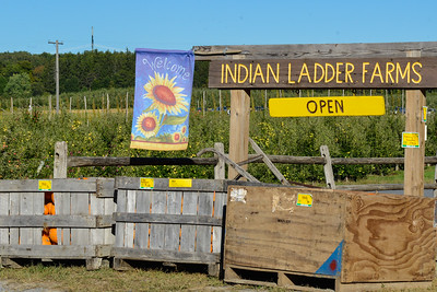 Indian Ladder Farm 2015