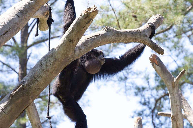 Zoo_Trip_11.jpg