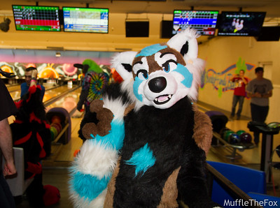 Fremont Furbowl (March 2017)