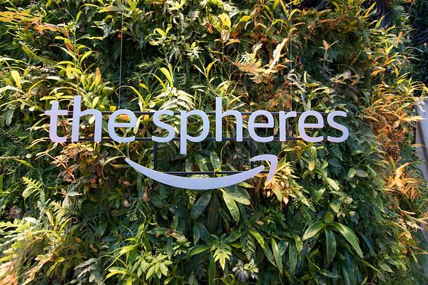 Spheres 2019