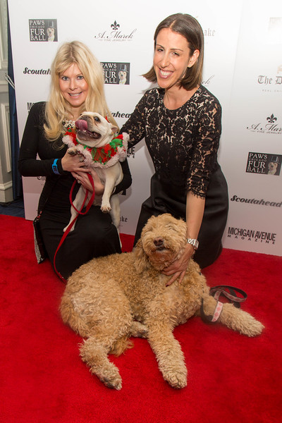 2016.11.18 - 2016 PAWS Chicago Fur Ball 179.jpg