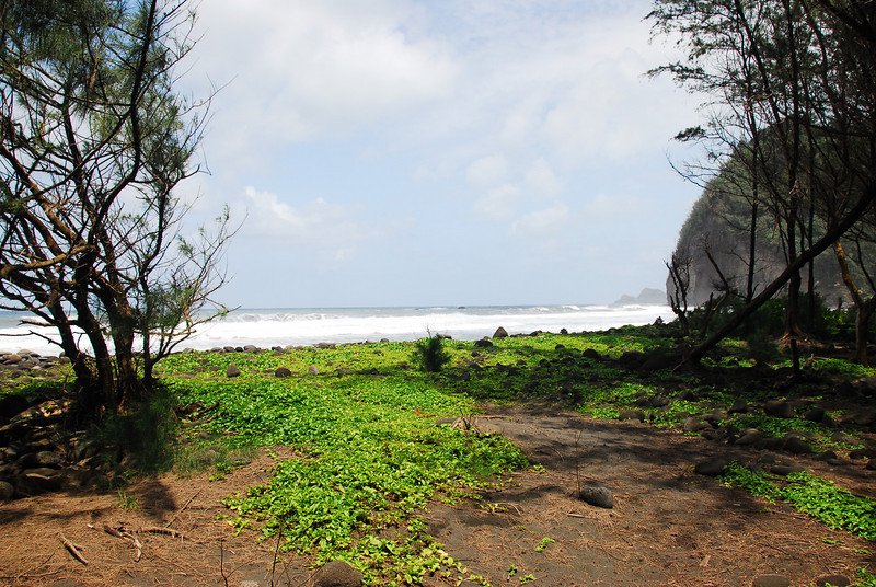 Beach near Pololu Valley, Hawaii