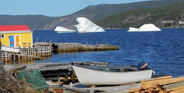 Icebergs 2019
