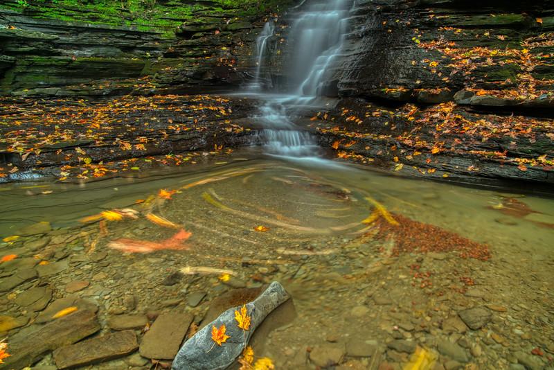 NY Waterfalls Fall 2019-9.jpg