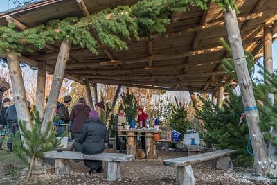 Hinterland's Christmas Tree Sale December 2017