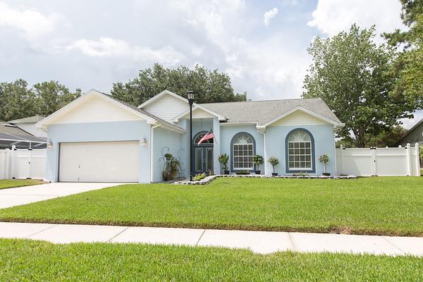 15124 Willowdale Rd Tampa FL 33625   MLS