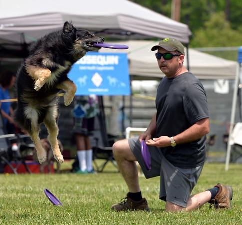 Maryland Dogfest 2017