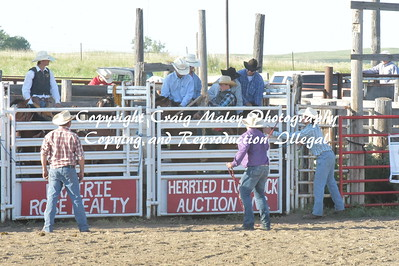 SADDLE BRONC PREF 6-18-2016