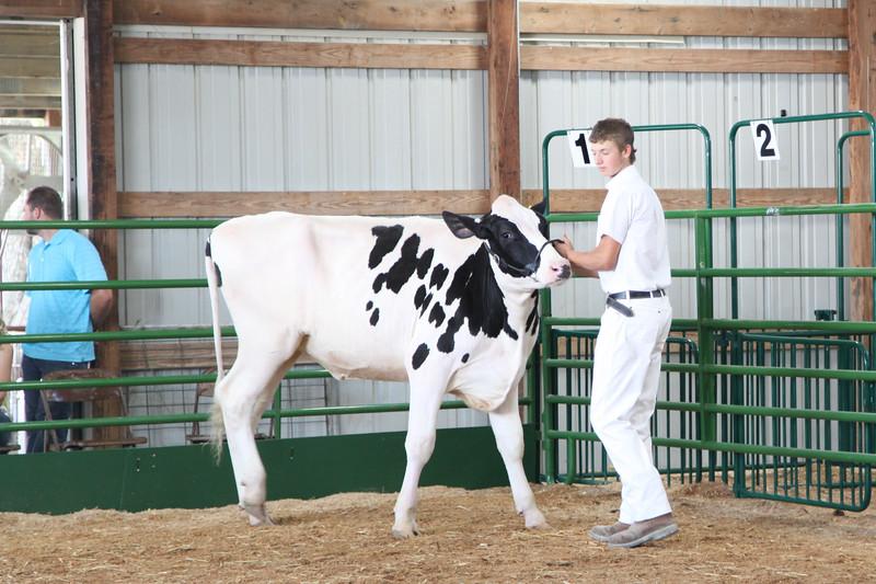 DairyShow-2.jpg