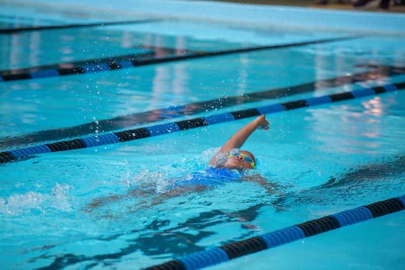 lcs_swimming_kevkramerphoto-292.jpg