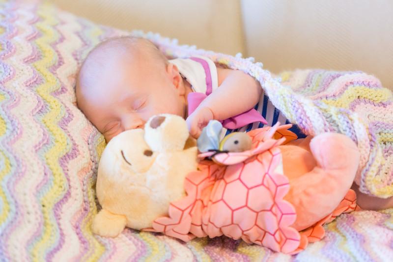 ELP0612 Baby Adeline Clermont Newborn 288.jpg