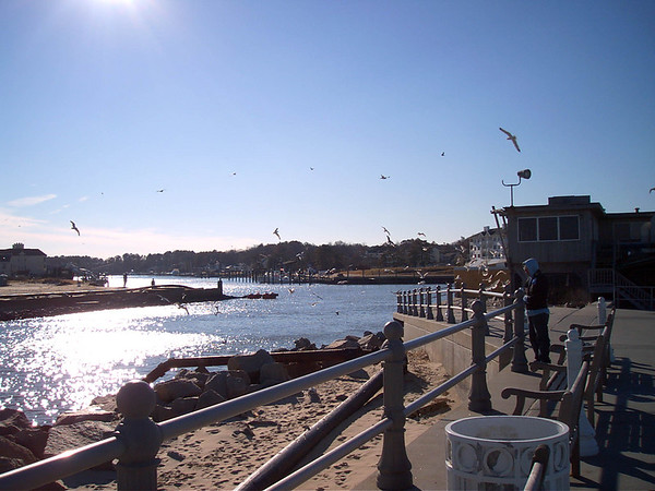 2004 01-19 Virginia Beach