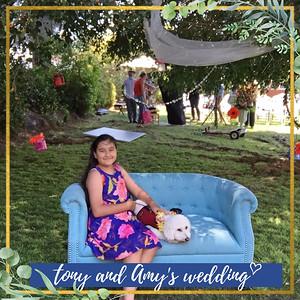 Tony + Amy