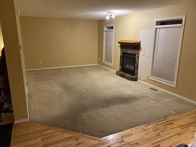 Ground Floor Renovation 2020