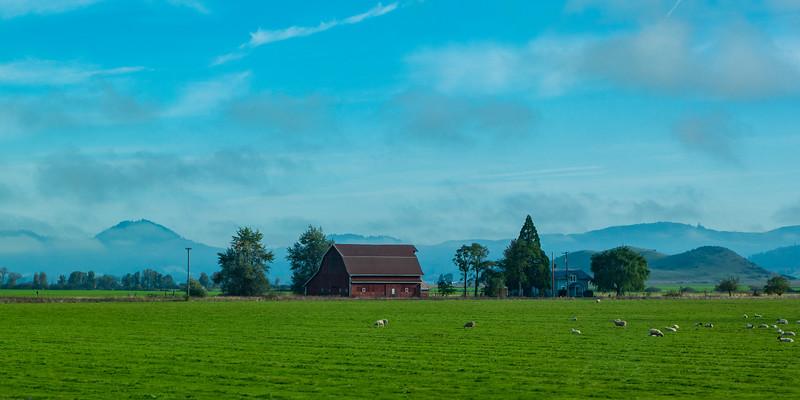 Oregon Farm Morning