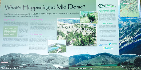 20170402 Mid Dome, Southland  _JM_7874 a.jpg