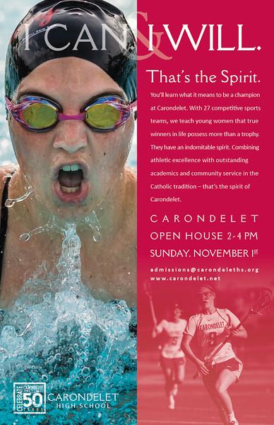 Posters-Swimmer.jpg