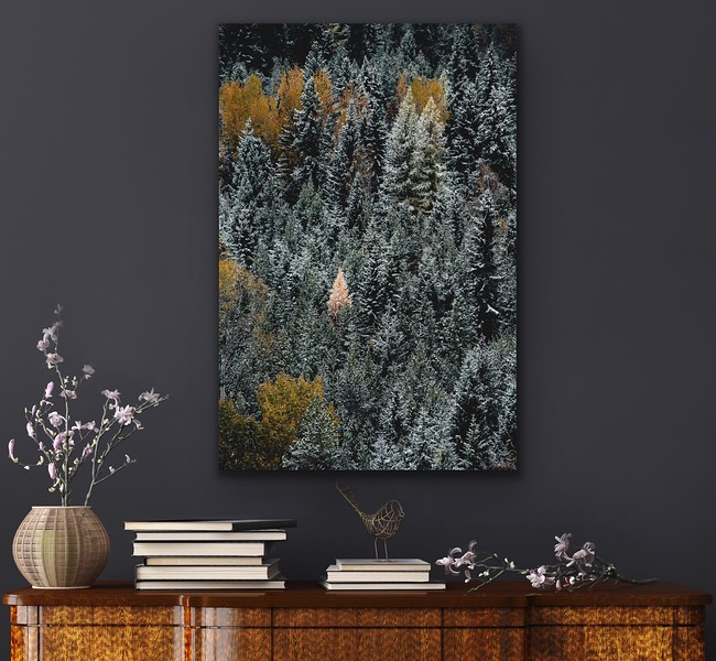 'One' Canvas Wrap or Float Mount Metal Print