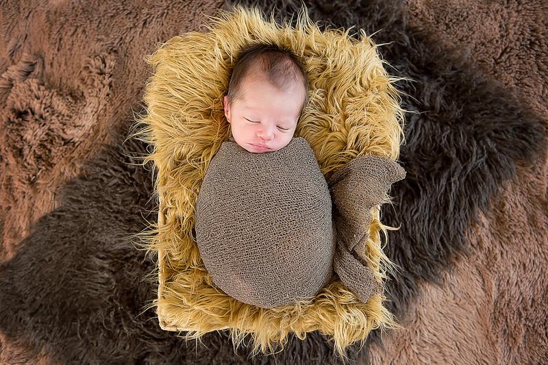 Newborns 201510.jpg