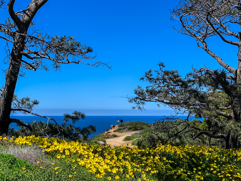 Pacific Vista - Point Loma